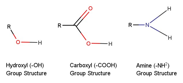 Examples of functional groups and their structures.  Diagram made using ChemAxion's MarvinSketch